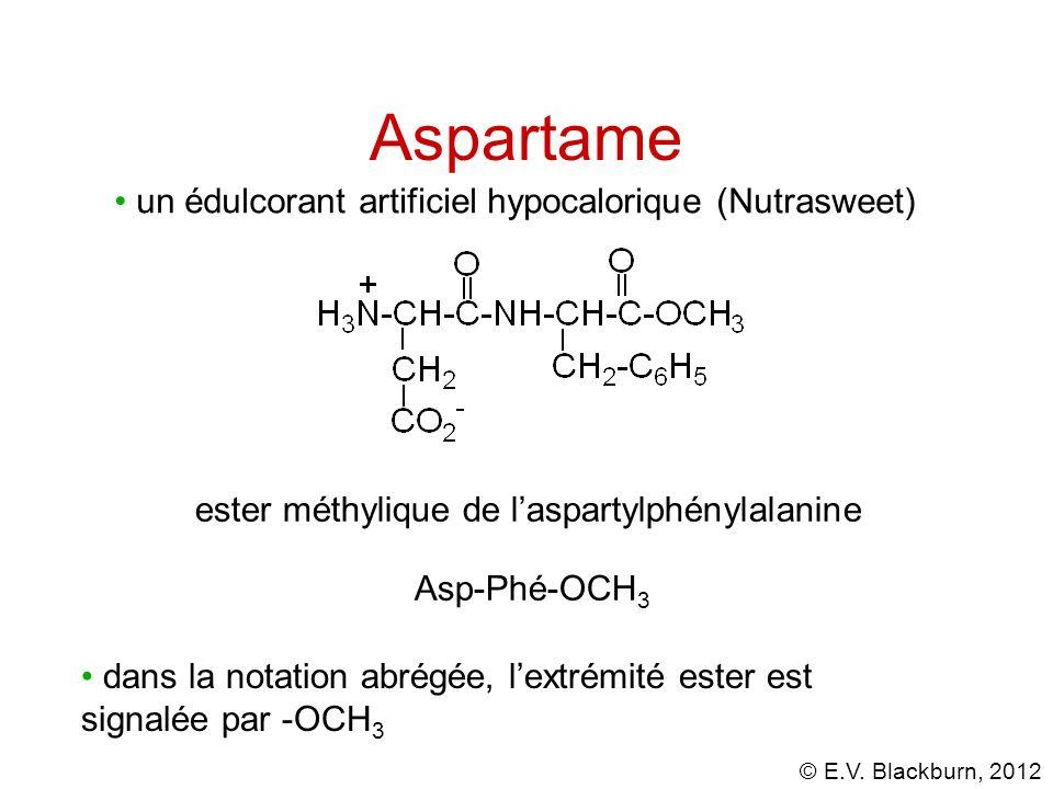 Aspartame un édulcorant artificiel hypocalorique (Nutrasweet)