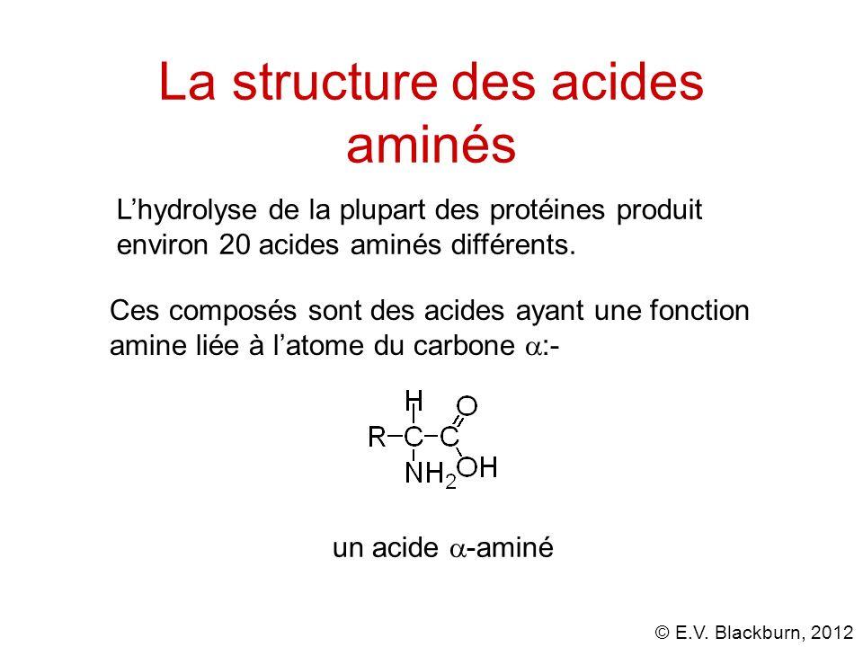 La structure des acides aminés
