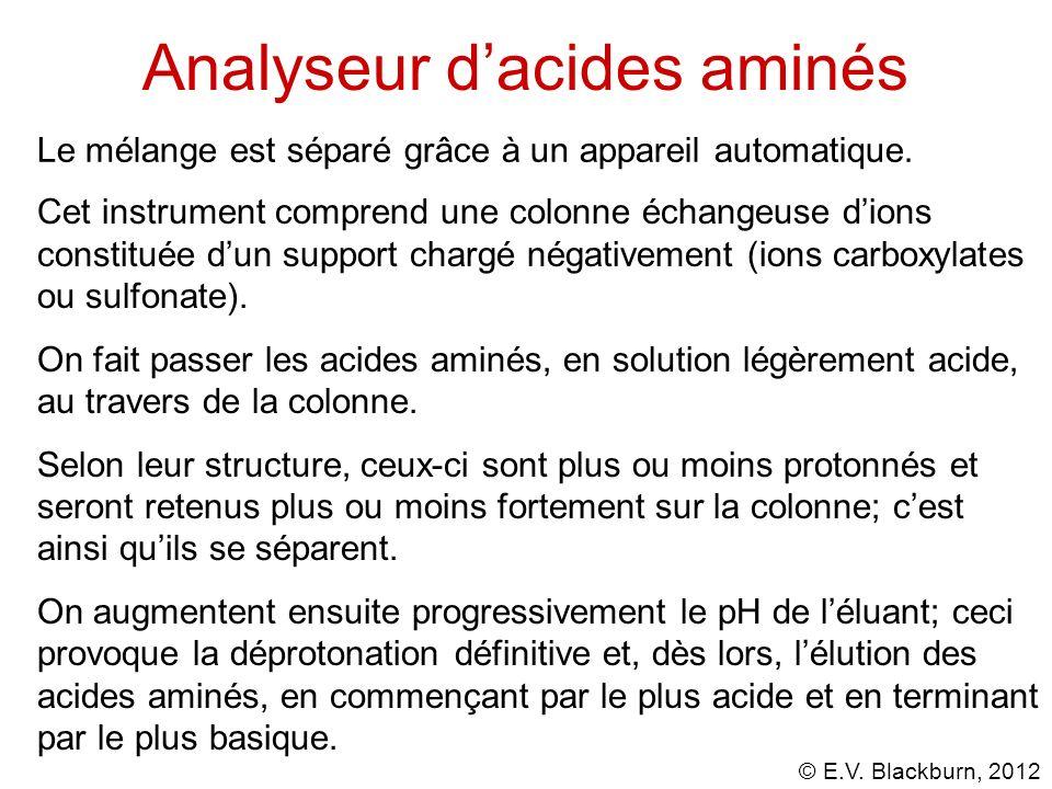 Analyseur d'acides aminés