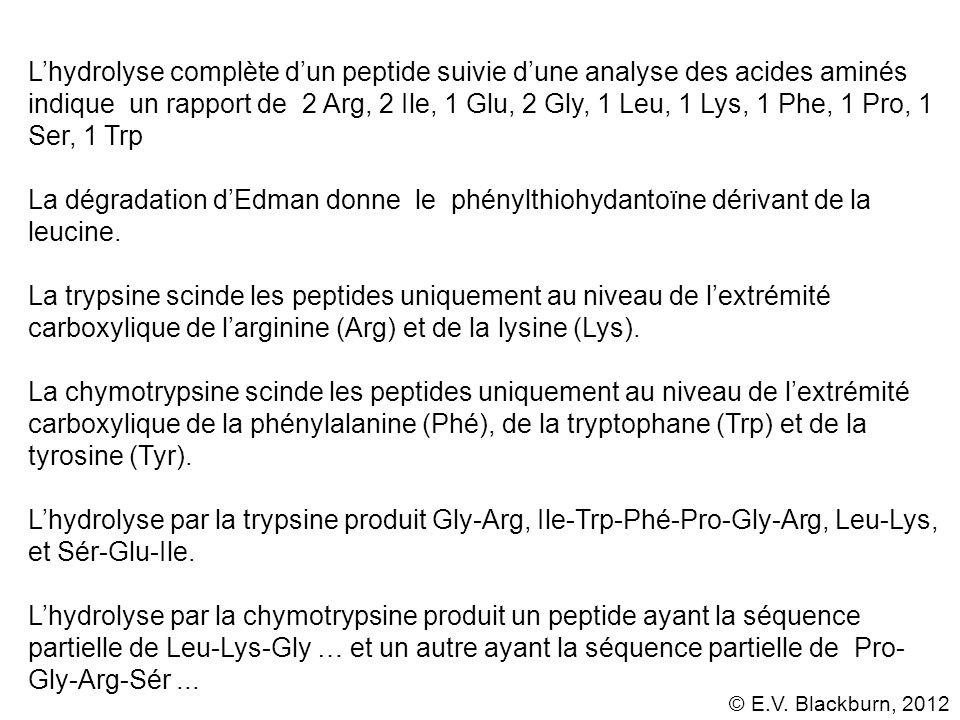 L'hydrolyse complète d'un peptide suivie d'une analyse des acides aminés indique un rapport de 2 Arg, 2 Ile, 1 Glu, 2 Gly, 1 Leu, 1 Lys, 1 Phe, 1 Pro, 1 Ser, 1 Trp