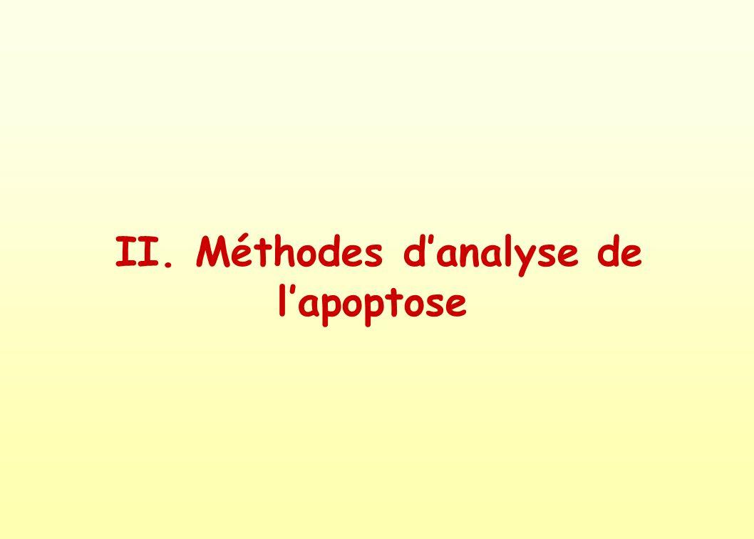 II. Méthodes d'analyse de l'apoptose