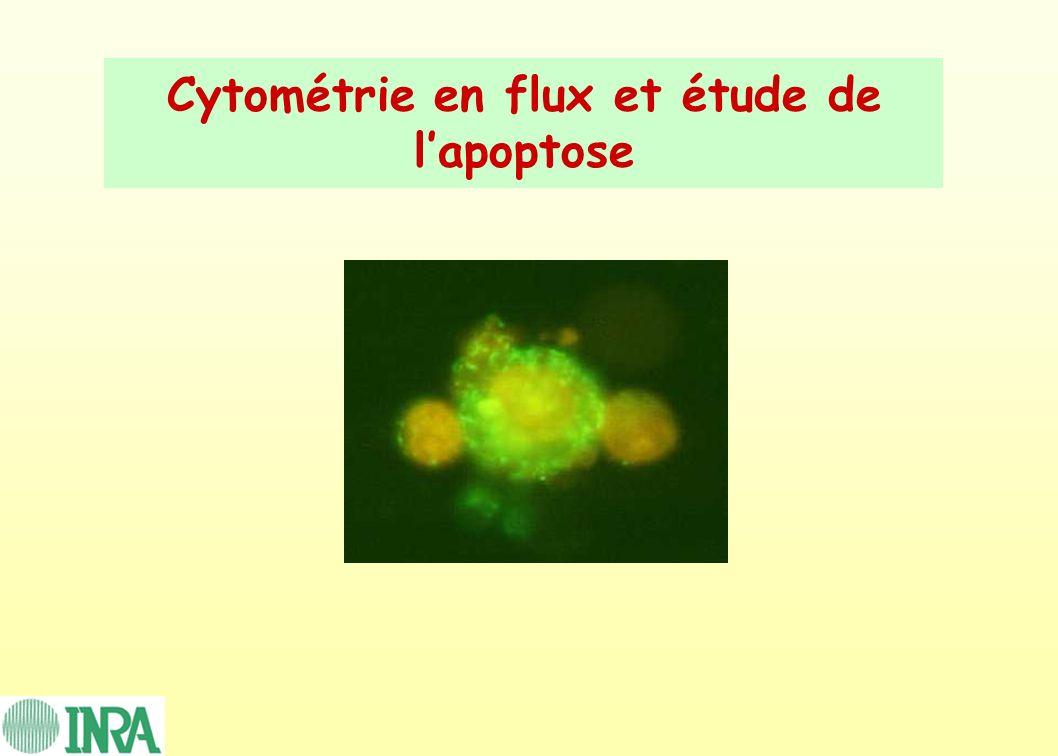Cytométrie en flux et étude de l'apoptose
