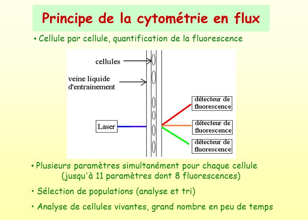 Principe de la cytométrie en flux