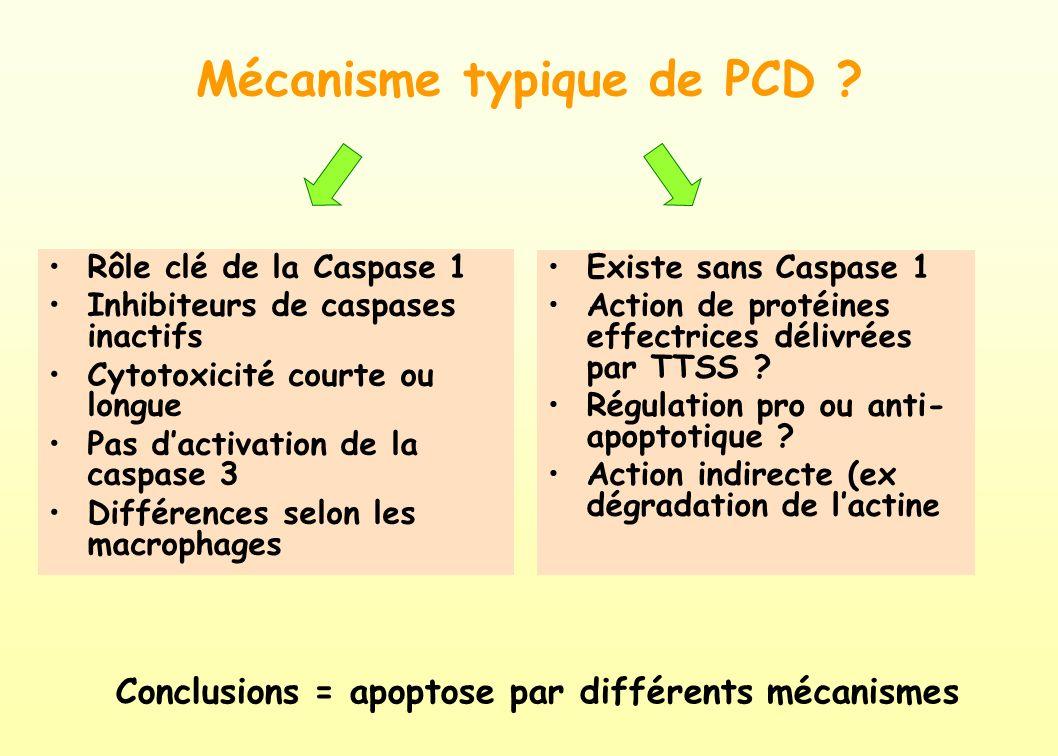 Mécanisme typique de PCD