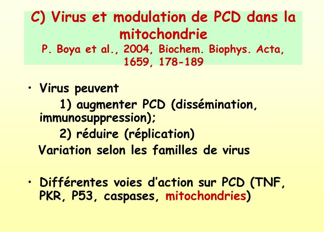 C) Virus et modulation de PCD dans la mitochondrie P. Boya et al