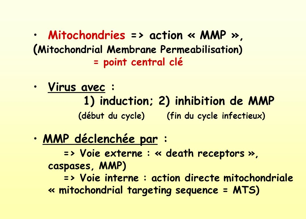=> Voie externe : « death receptors », caspases, MMP)