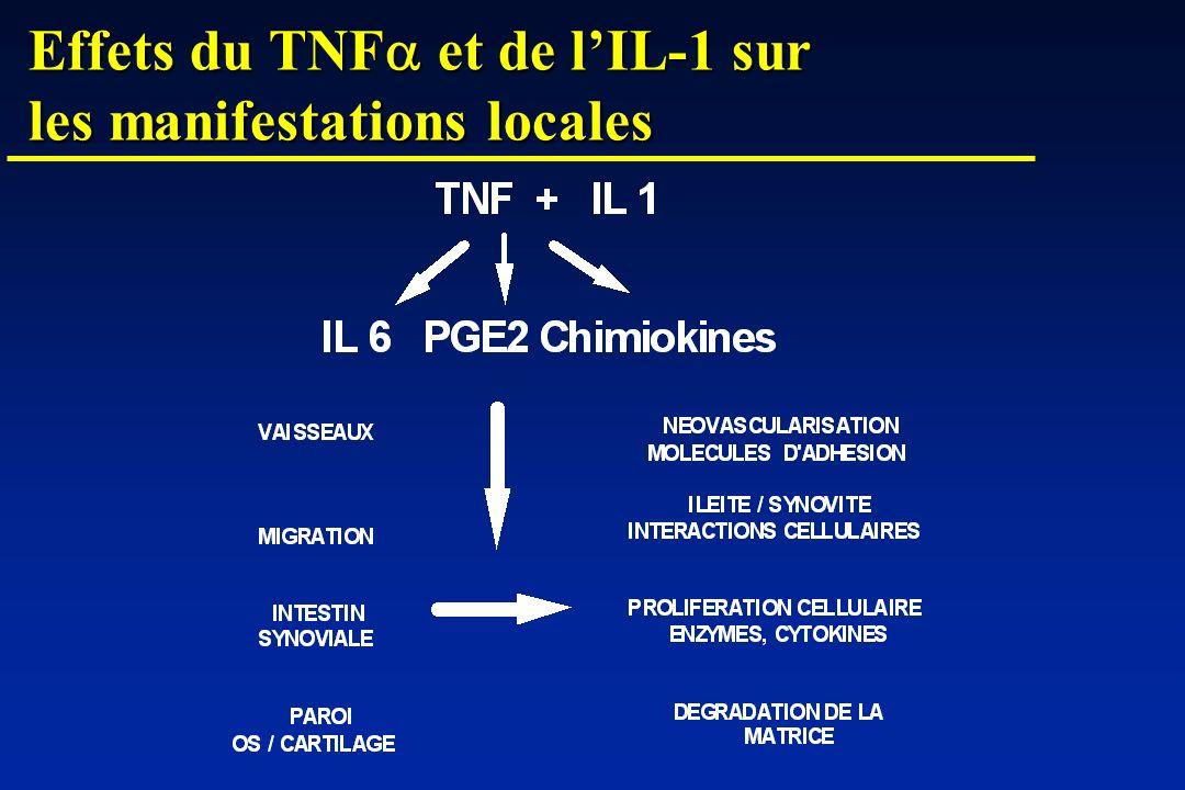 Effets du TNFa et de l'IL-1 sur les manifestations locales