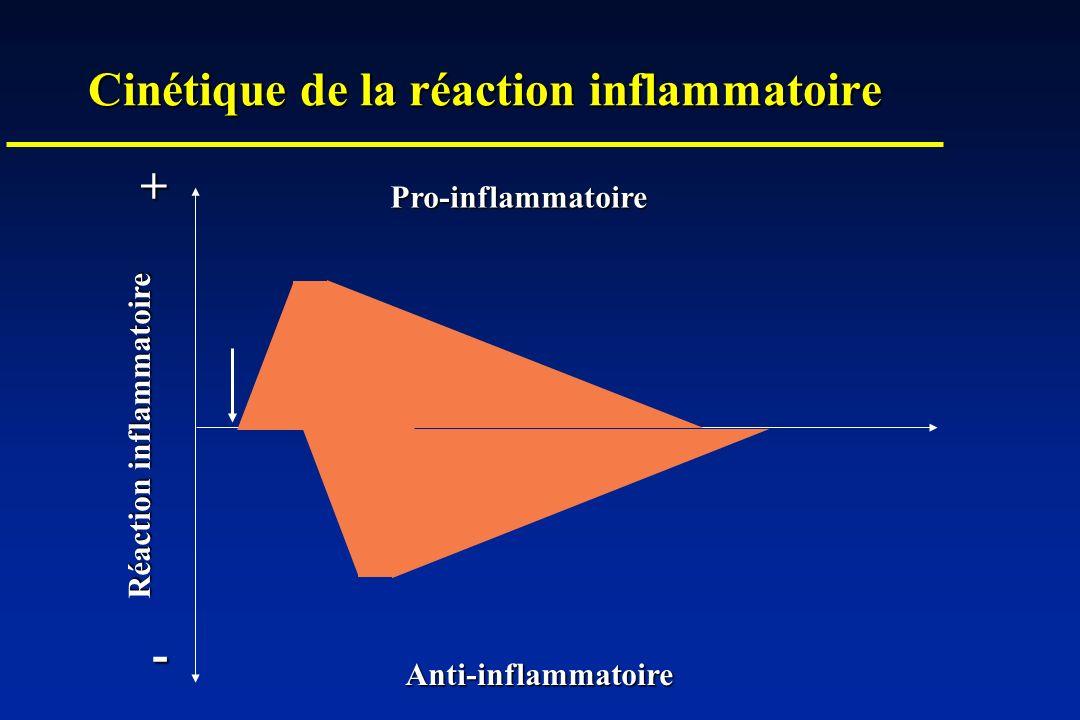 Cinétique de la réaction inflammatoire