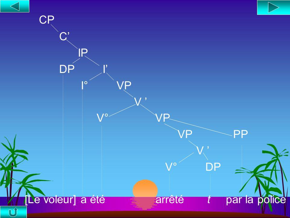 CP C' IP DP I' I° VP V ' V° VP VP PP V ' V° DP