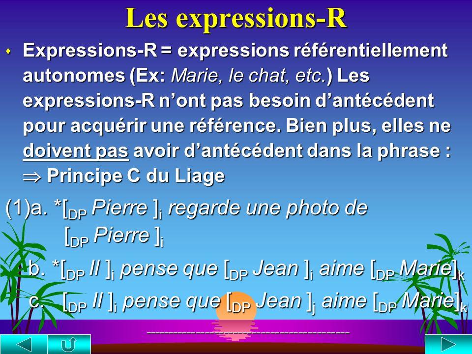 Les expressions-R