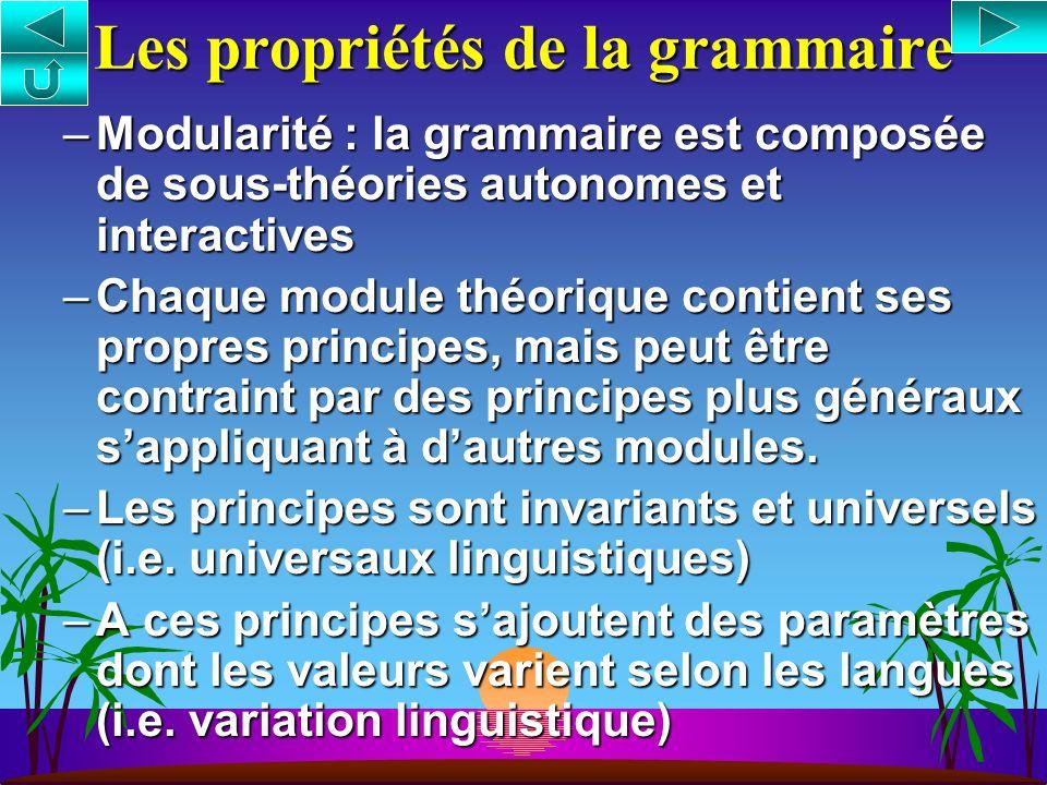 Les propriétés de la grammaire