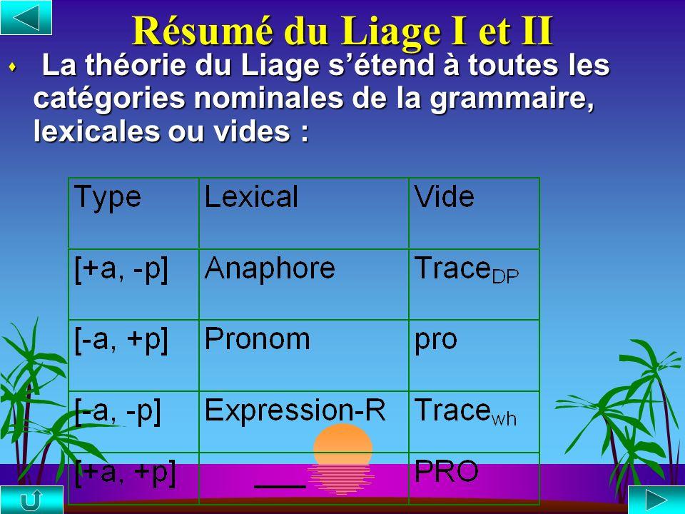 Résumé du Liage I et II La théorie du Liage s'étend à toutes les catégories nominales de la grammaire, lexicales ou vides :