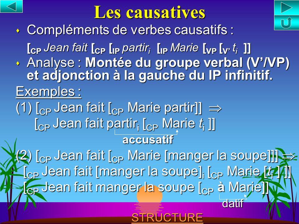 Les causatives Compléments de verbes causatifs :