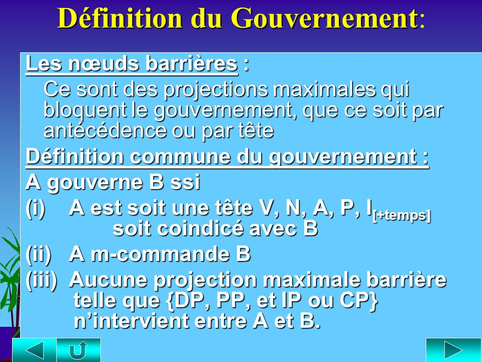 Définition du Gouvernement: