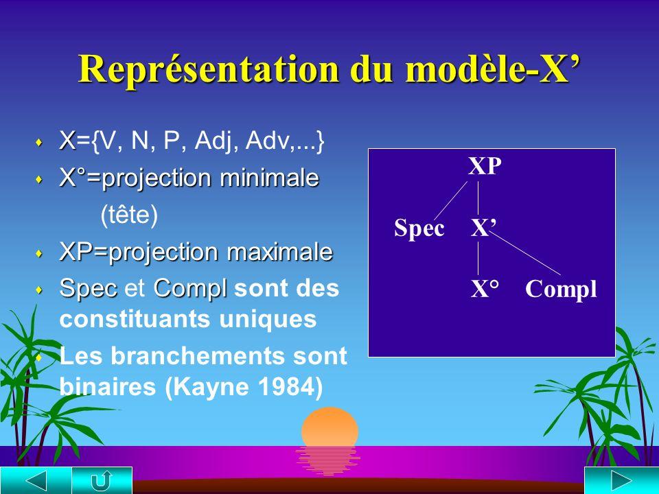 Représentation du modèle-X'
