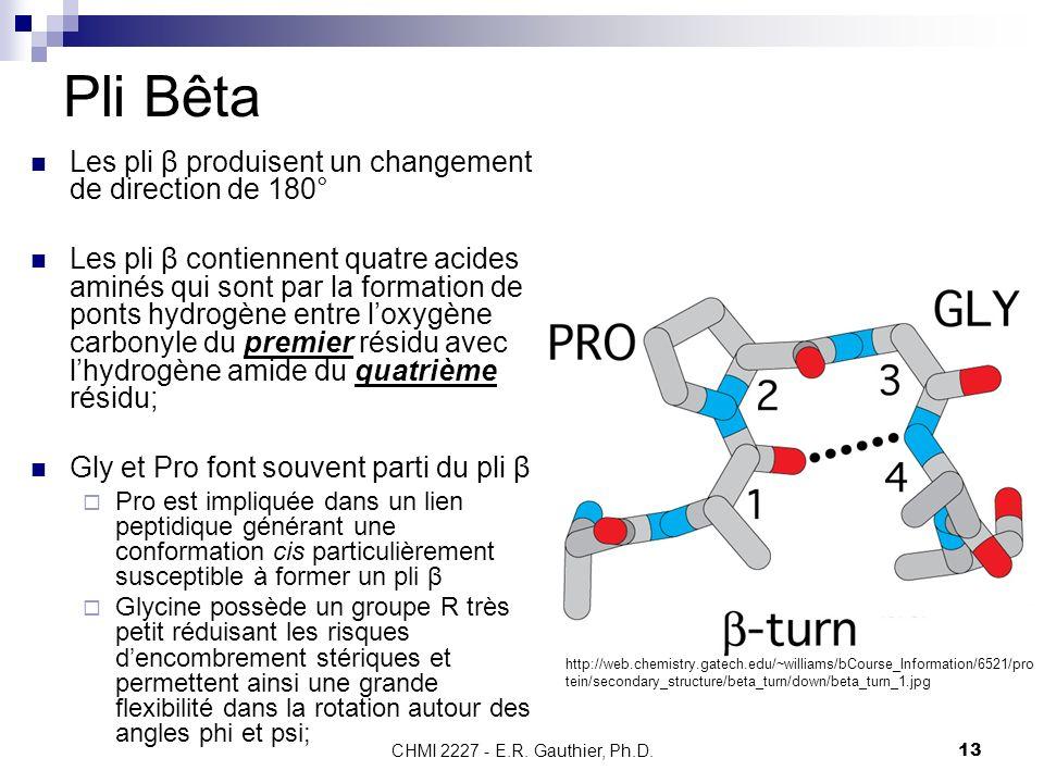 Pli Bêta Les pli β produisent un changement de direction de 180°