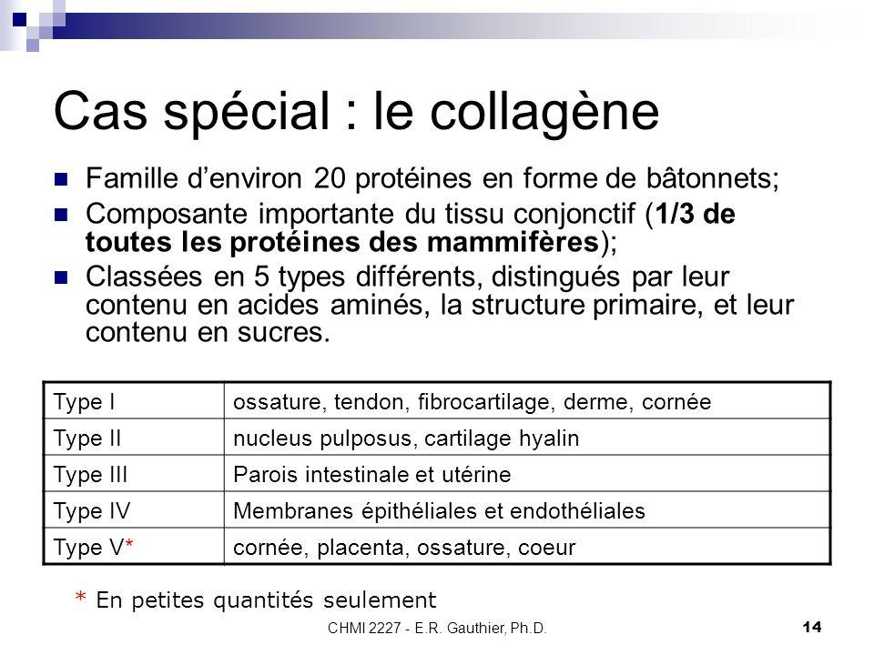 Cas spécial : le collagène