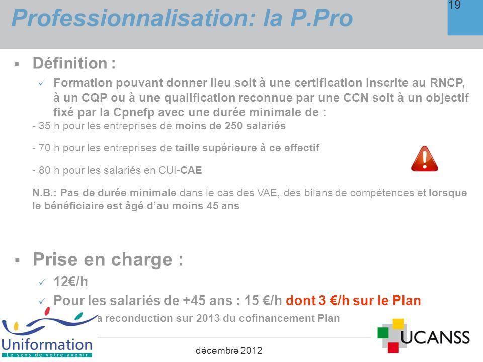 Professionnalisation: la P.Pro