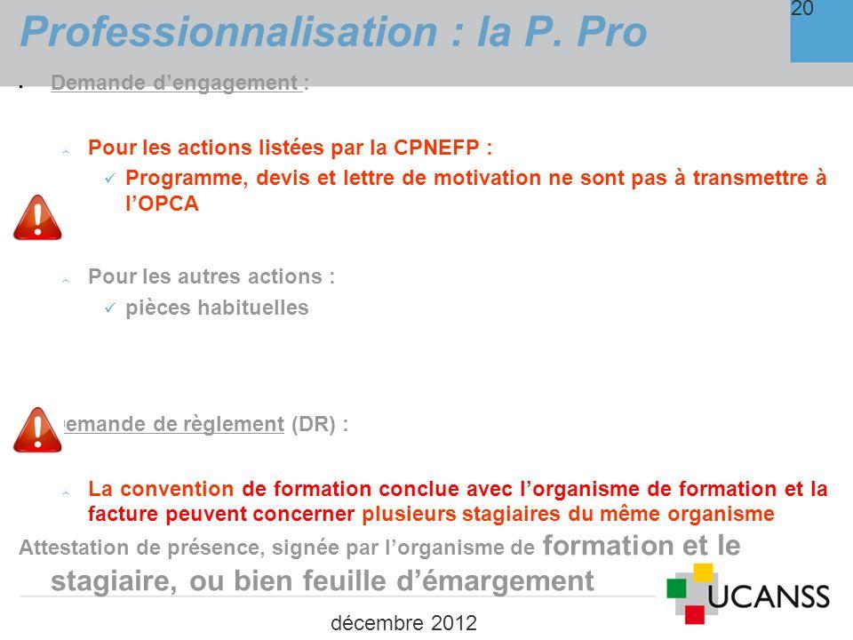 Professionnalisation : la P. Pro