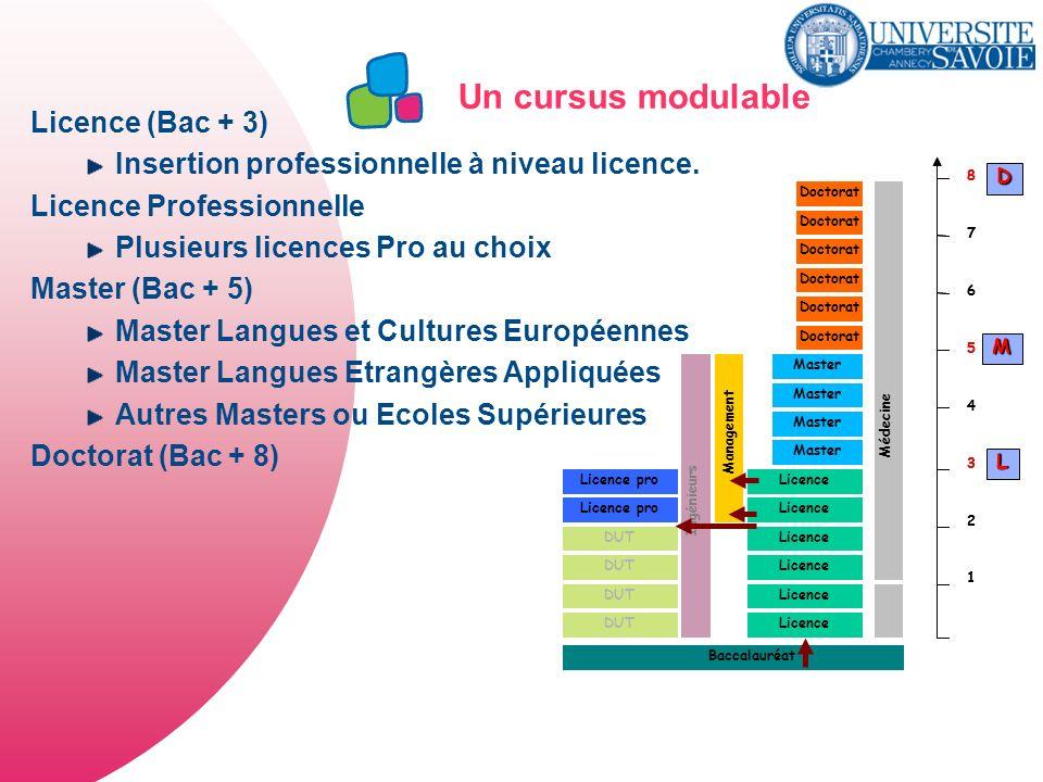 Un cursus modulable Licence (Bac + 3)