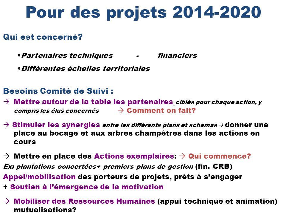 Pour des projets 2014-2020 Qui est concerné Besoins Comité de Suivi :
