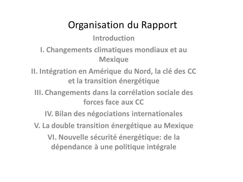 Organisation du Rapport