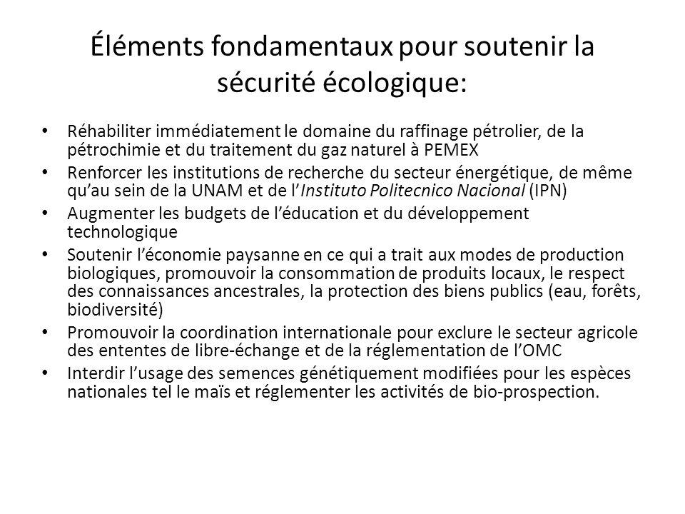Éléments fondamentaux pour soutenir la sécurité écologique: