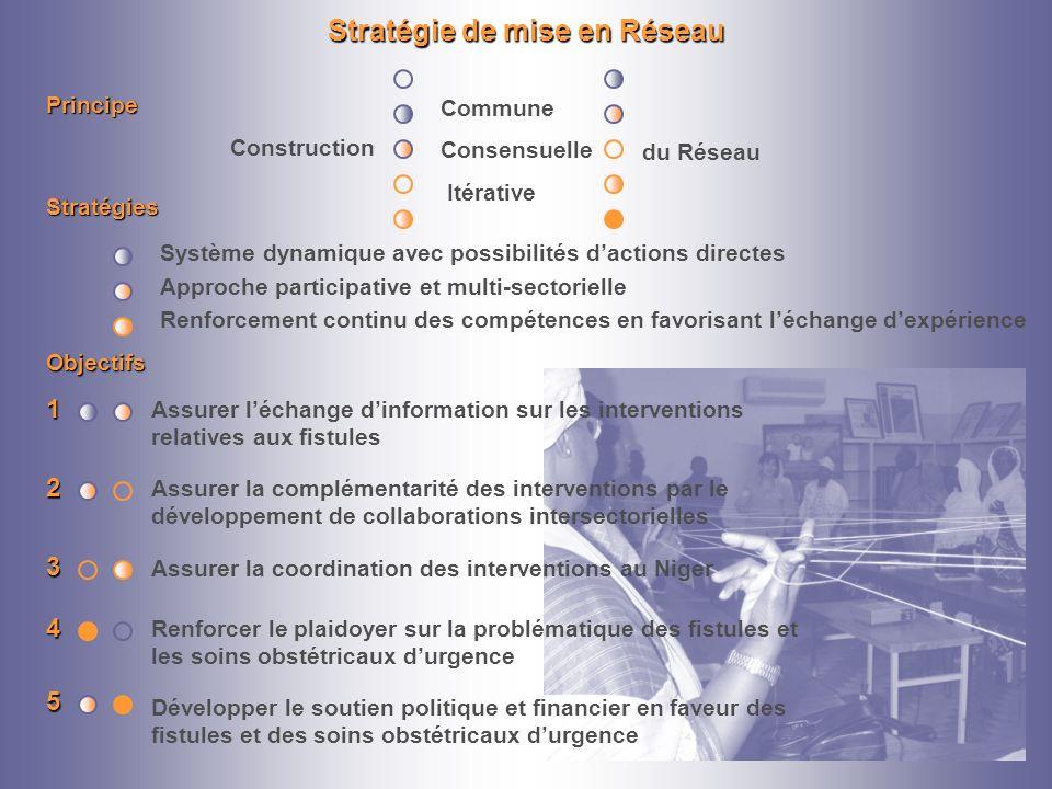Stratégie de mise en Réseau
