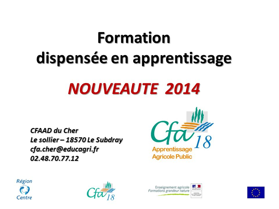 dispensée en apprentissage