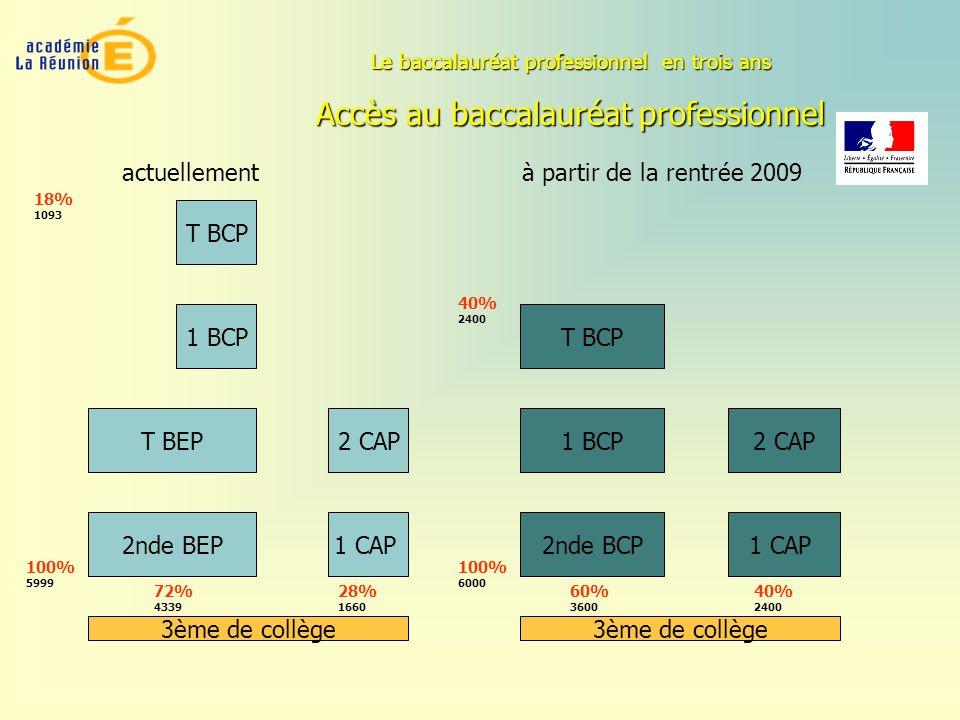 Accès au baccalauréat professionnel