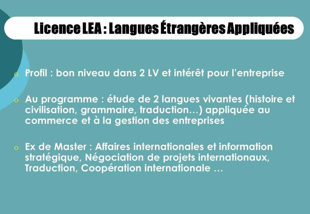 Licence LEA : Langues Étrangères Appliquées