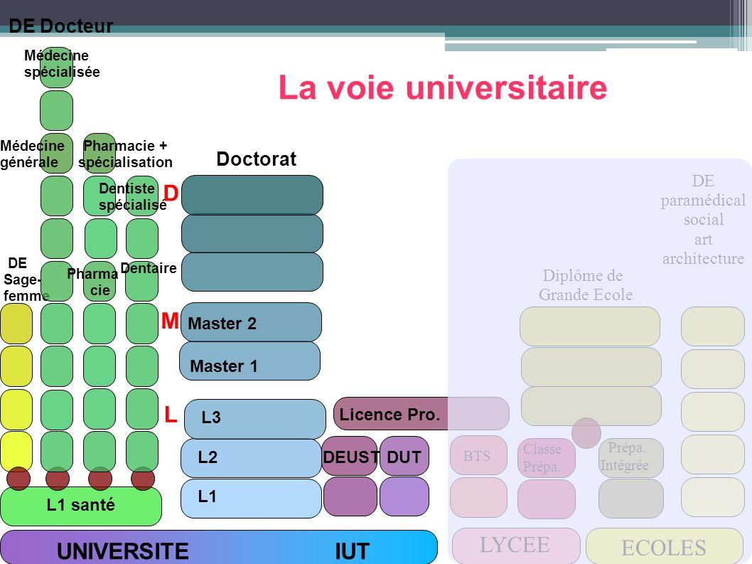 La voie universitaire D M L LYCEE ECOLES UNIVERSITE IUT DE Docteur