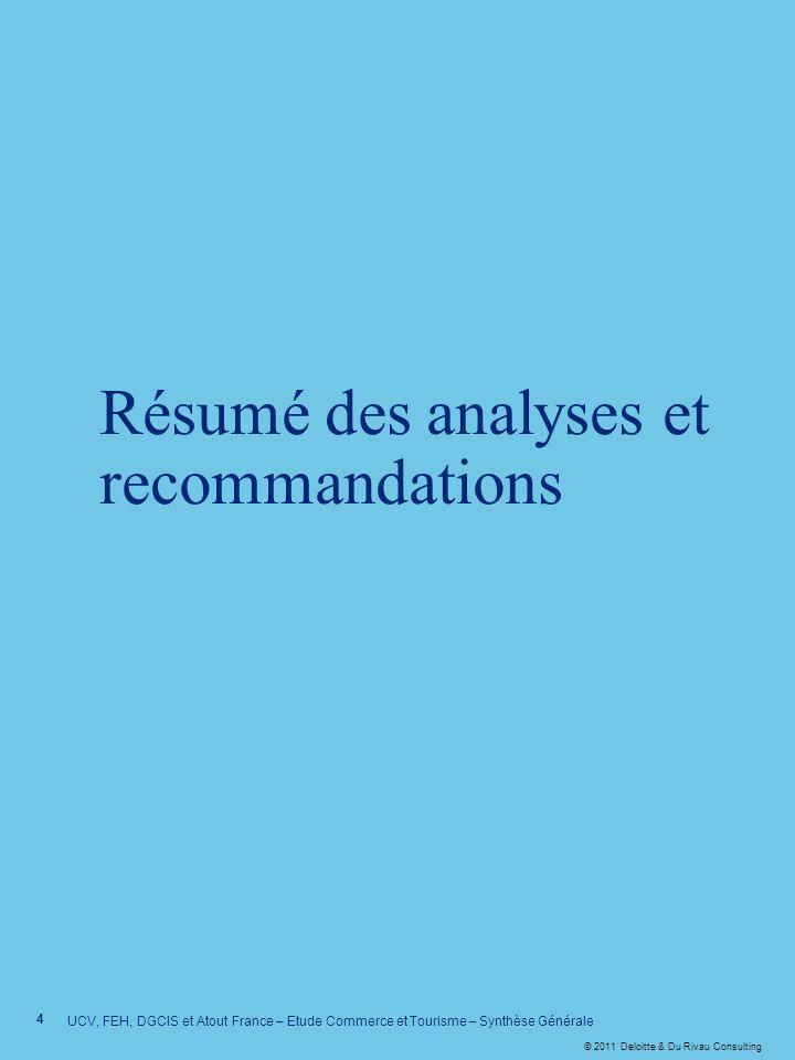 Résumé des analyses et recommandations
