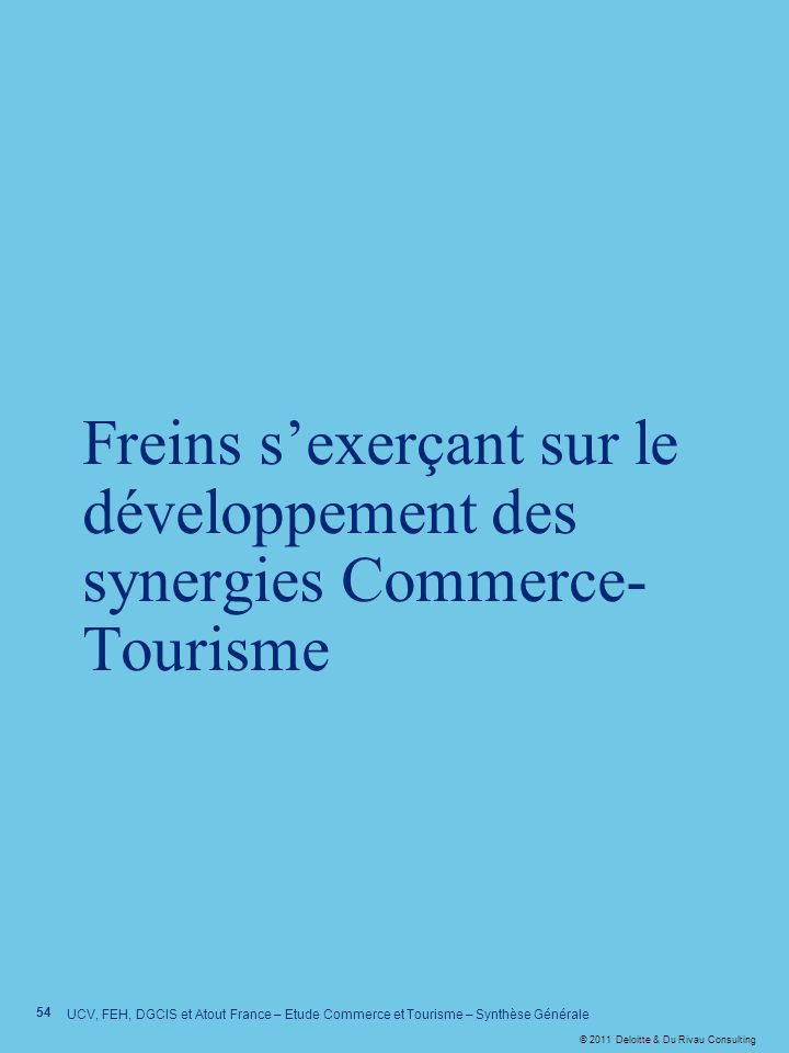 Freins s'exerçant sur le développement des synergies Commerce-Tourisme