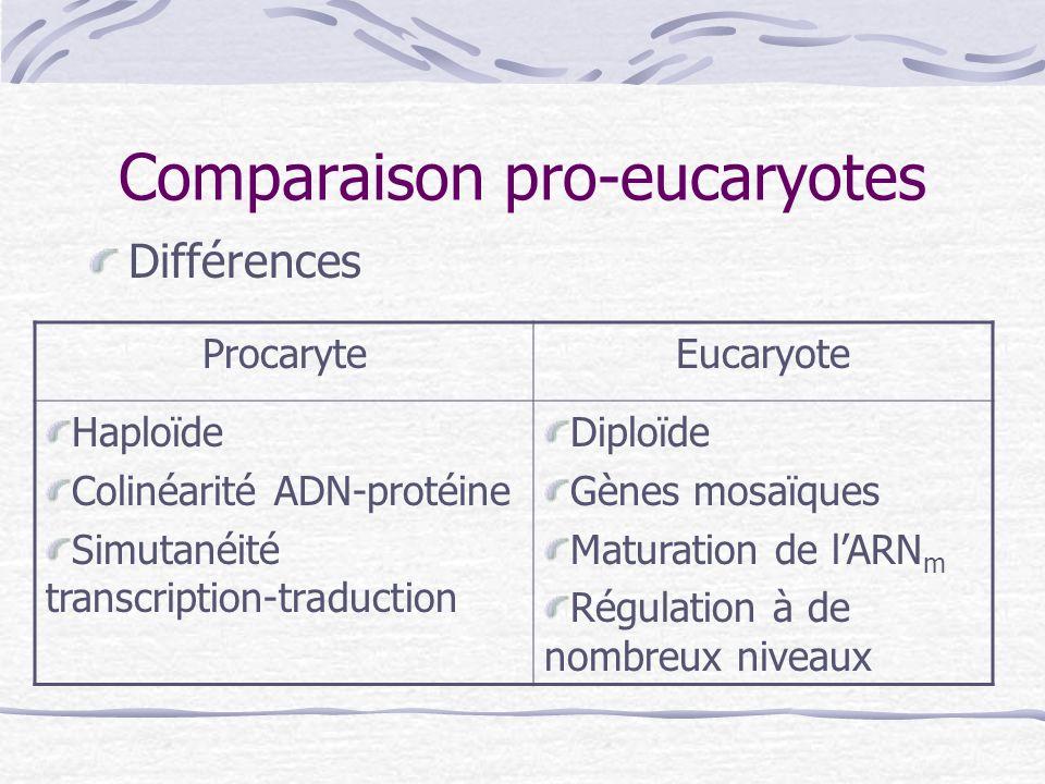 Comparaison pro-eucaryotes