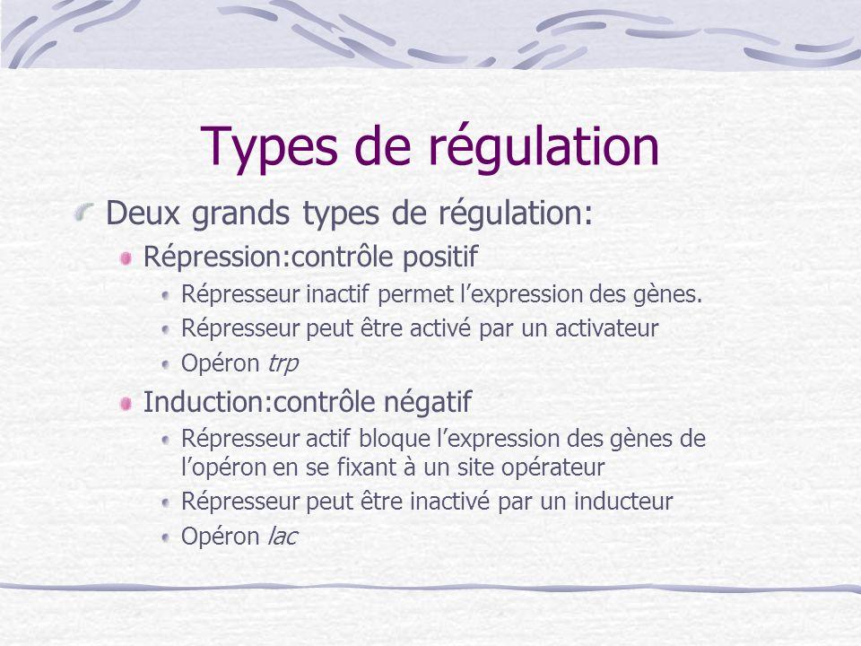 Types de régulation Deux grands types de régulation:
