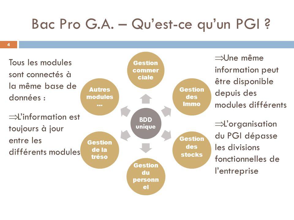 Bac Pro G.A. – Qu'est-ce qu'un PGI