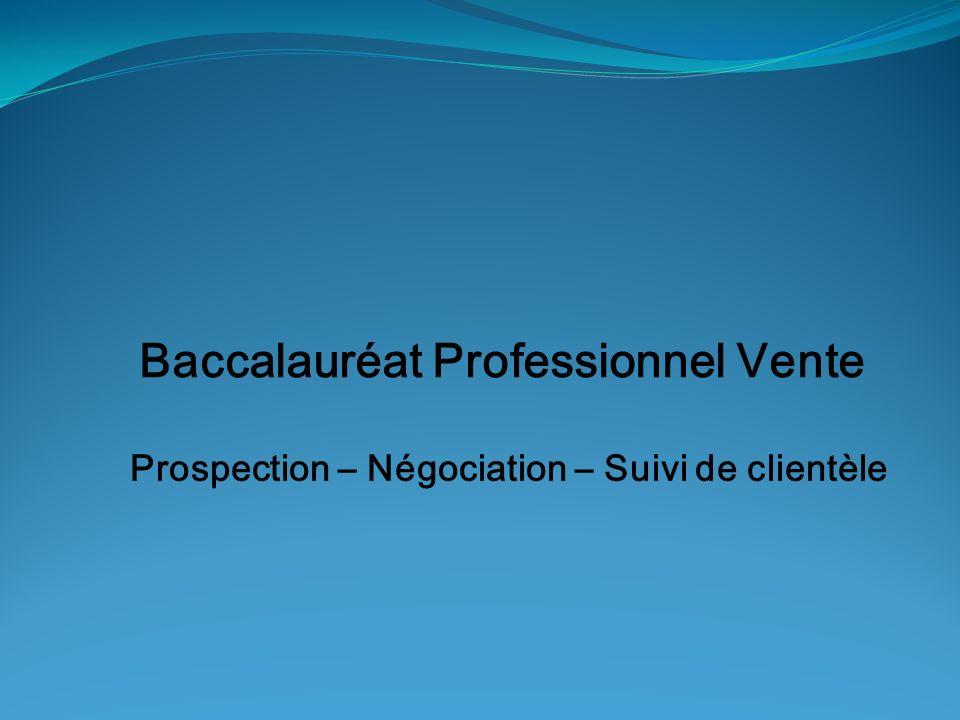 Baccalauréat Professionnel Vente