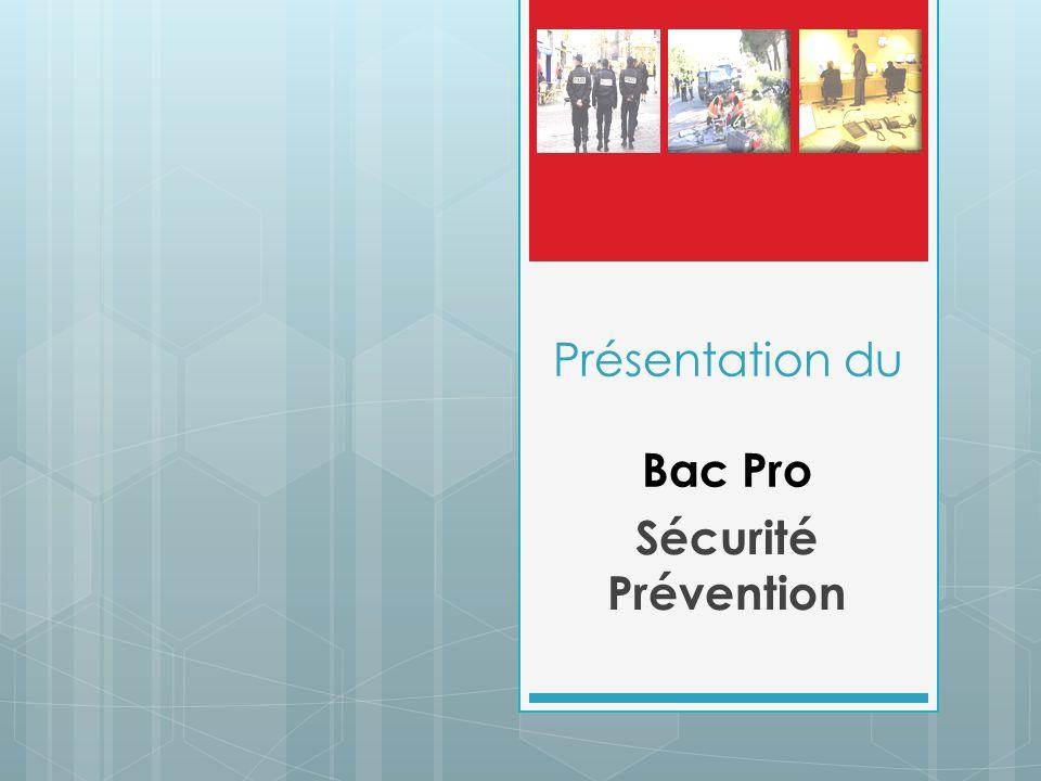 Présentation du Bac Pro