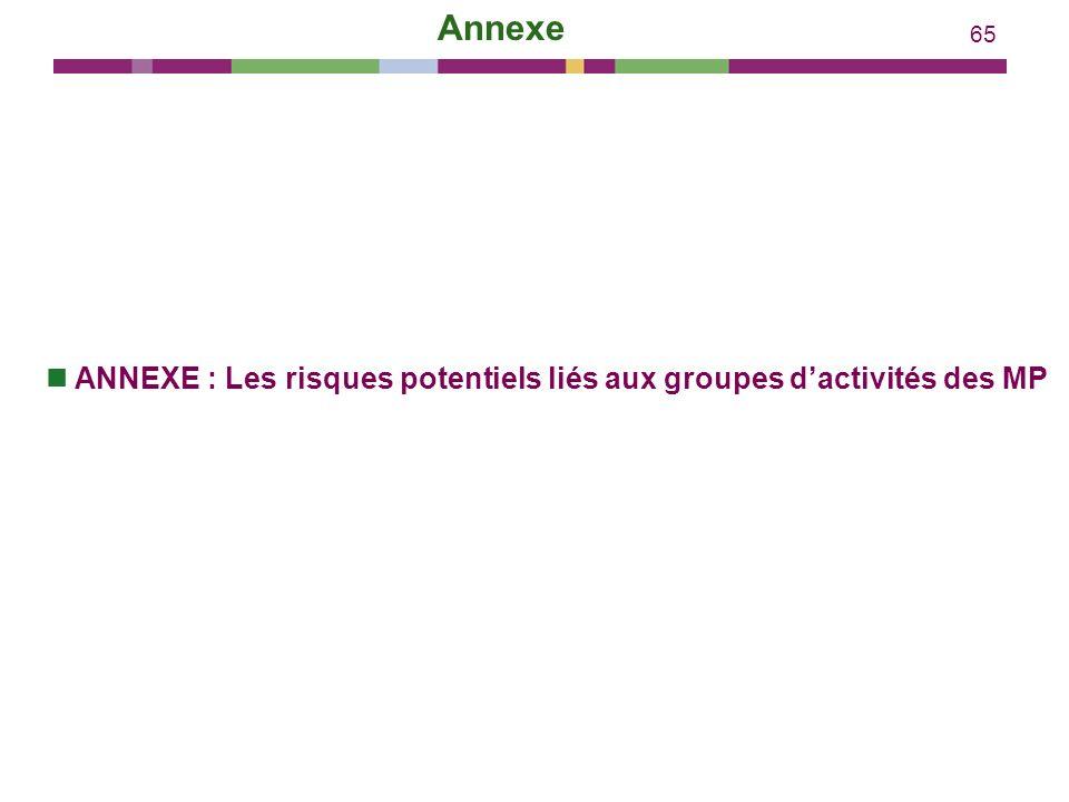 Annexe ANNEXE : Les risques potentiels liés aux groupes d'activités des MP