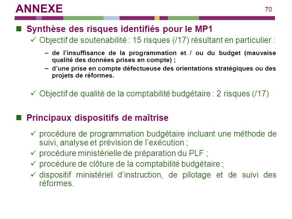 ANNEXE Synthèse des risques identifiés pour le MP1