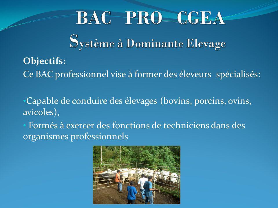 BAC PRO CGEA Système à Dominante Elevage