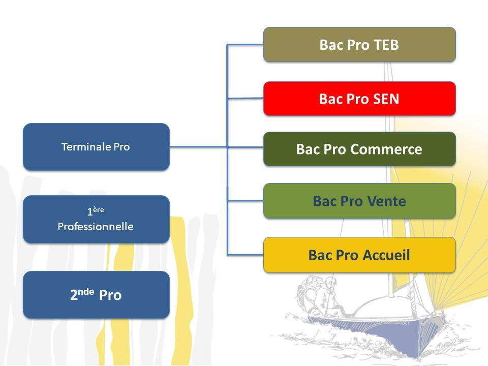 Bac Pro TEB Bac Pro SEN Bac Pro Commerce Bac Pro Vente Bac Pro Accueil