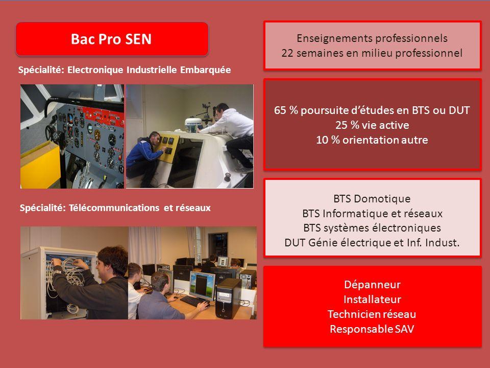 Bac Pro SEN Enseignements professionnels