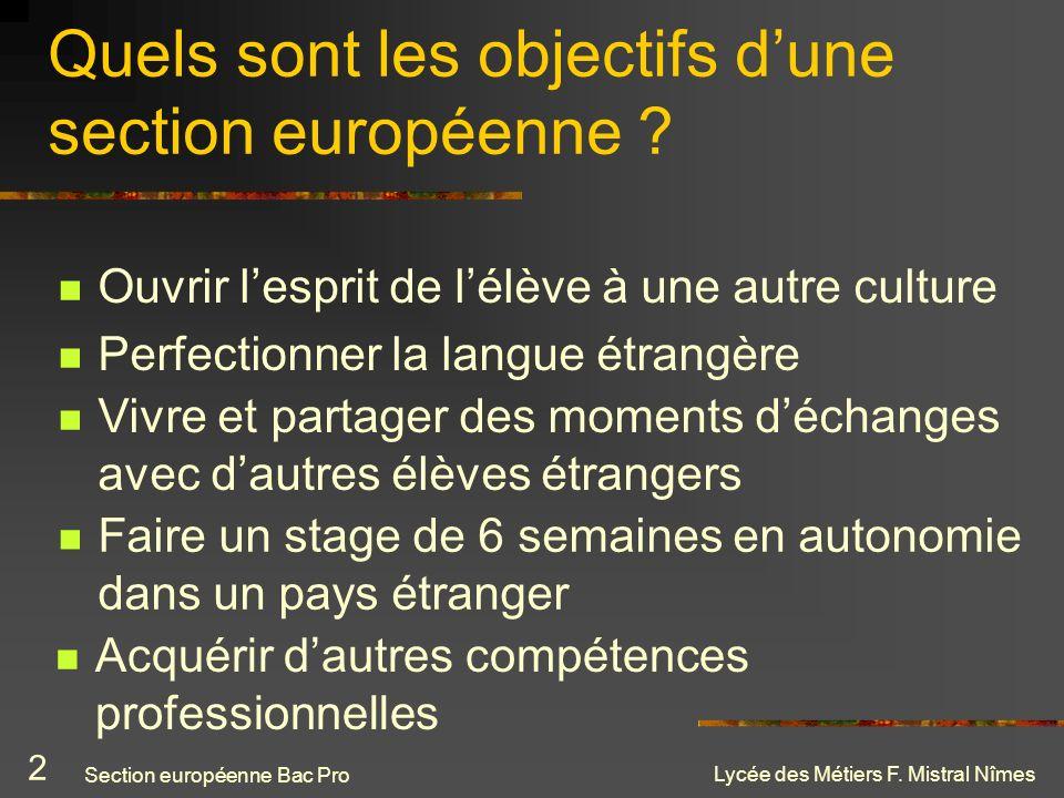 Quels sont les objectifs d'une section européenne