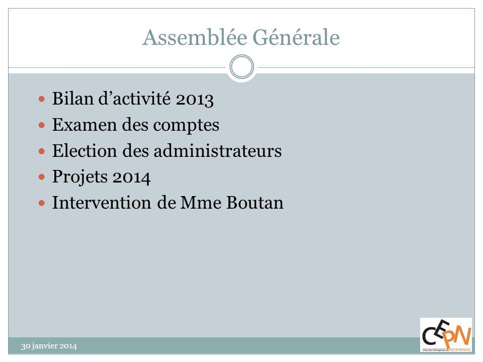 Assemblée Générale Bilan d'activité 2013 Examen des comptes