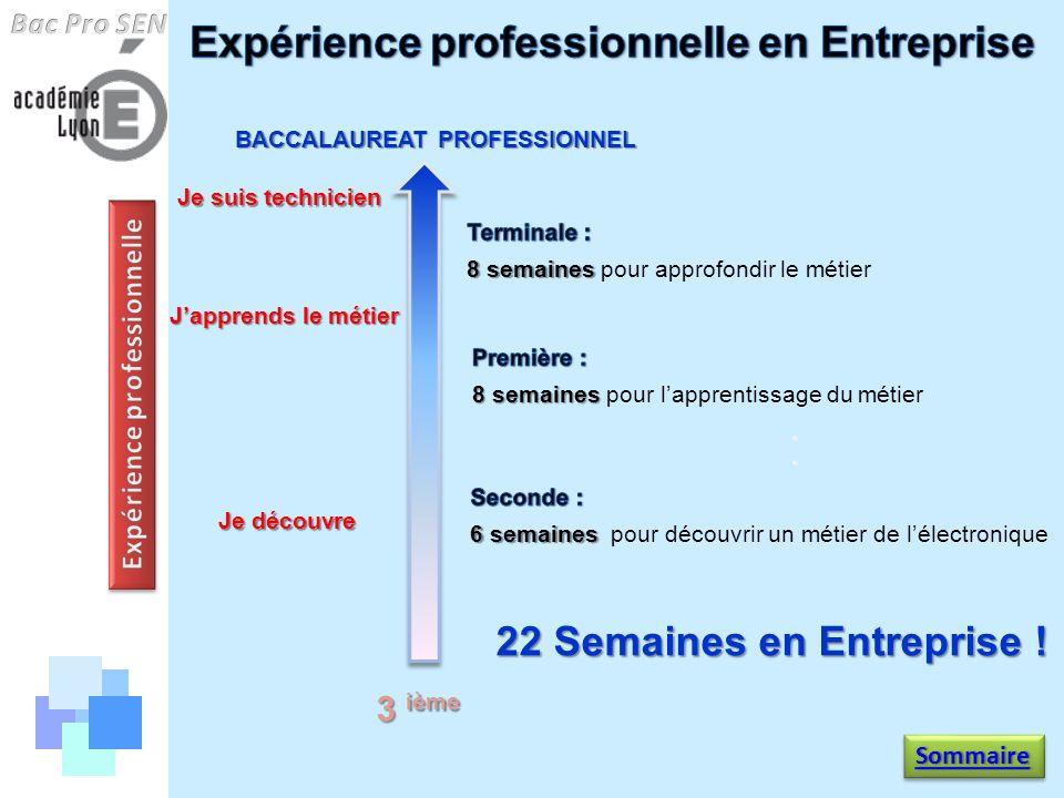 Expérience professionnelle en Entreprise