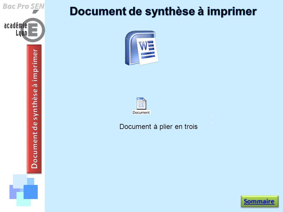Document de synthèse à imprimer Document de synthèse à imprimer