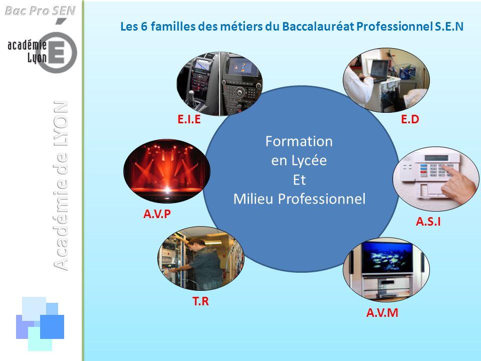 Les 6 familles des métiers du Baccalauréat Professionnel S.E.N