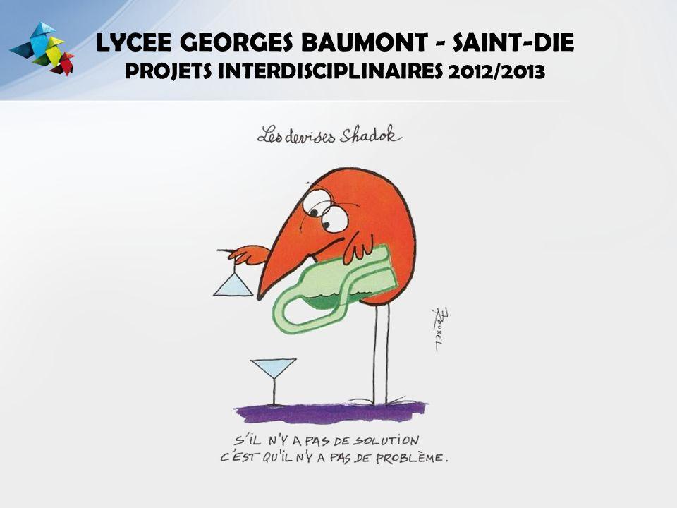 LYCEE GEORGES BAUMONT - SAINT-DIE